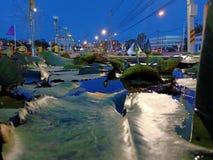 лотос в городе стоковое изображение rf