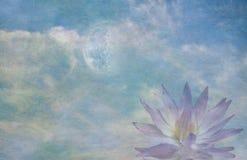 Лотос и луна бесплатная иллюстрация