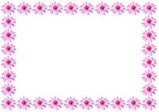 лотос рамки Стоковая Фотография