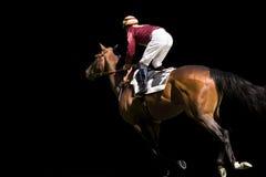 лошадиные скачки Стоковое фото RF