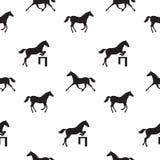 лошади безшовные Стоковое Изображение