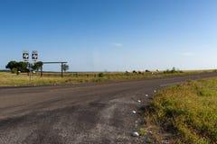 Лошади в ранчо в сельском Техасе, США Стоковые Изображения
