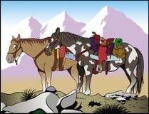 Лошади горы стоковые изображения