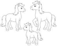 лошади животной семьи персонажей из мультфильма смешные изолировали Стоковые Изображения