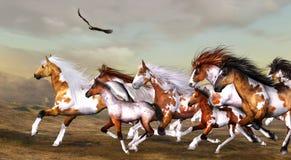 лошади одичалые иллюстрация вектора