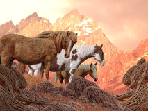 лошади одичалые иллюстрация штока