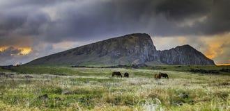Лошади пася перед Rano Raraku во время захода солнца предчувствия стоковая фотография rf