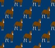 Лошадь Брайна на предпосылке шаржа сини военно-морского флота также вектор иллюстрации притяжки corel иллюстрация штока