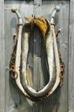 лошадь ворота Стоковое Изображение RF