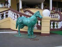 Лошадь в пальто Стоковое Фото