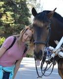 Лошадь задразнила язык в камере Стоковые Изображения