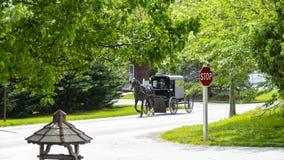 Лошадь и багги Амишей идя вниз с дороги стоковое фото rf