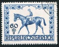 Лошадь и жокей гонки Стоковые Изображения