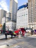 Лошадь и экипажи на Central Park в Нью-Йорке стоковые фото