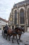 Лошадь и экипаж ждут клиентов в вене в Австрии Стоковое Изображение RF