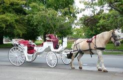 Лошадь и экипаж стоковое изображение rf