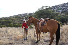 лошадь ковбоя Стоковое Фото