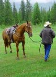 лошадь ковбоя Стоковая Фотография RF