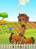 Лошадь на сельскохозяйственных угодьях иллюстрация штока