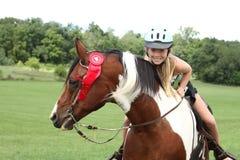 лошадь пожалования Стоковые Фотографии RF