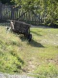 лошадь тележки деревенская Стоковые Фотографии RF
