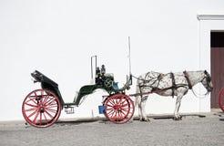 лошадь экипажа открытая Стоковое фото RF