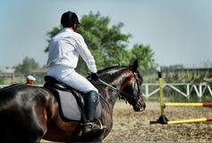 лошадь derby стоковое фото rf