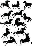 лошадь silhouettes 12 Стоковые Изображения RF