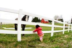 лошадь staring3 ребенка Стоковая Фотография