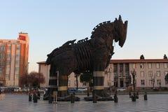 Лошадь Troia стоковые фотографии rf