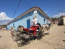 Лошад-нарисованный Тринидад стоковые изображения
