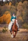 Лошад-звероловство с всадниками в привычке катания Стоковые Изображения RF