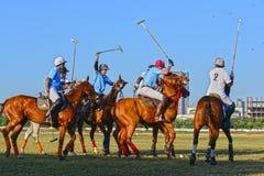 Лошадиные скачки в Мумбае Стоковое Изображение