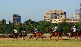 Лошадиные скачки в Мумбае Стоковые Фотографии RF