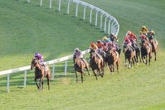 Лошадиные скачки в Shatian Стоковая Фотография RF