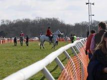 Лошадиные скачки дилетанта скача над загородками Стоковое Фото