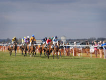 Лошадиные скачки дилетанта скача над загородками Стоковая Фотография