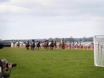 Лошадиные скачки дилетанта скача над загородками Стоковое Изображение RF