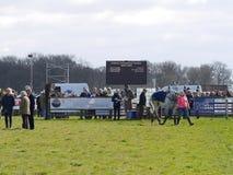 Лошадиные скачки дилетанта скача над загородками Стоковые Фотографии RF