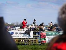 Лошадиные скачки дилетанта скача над загородками Стоковые Изображения