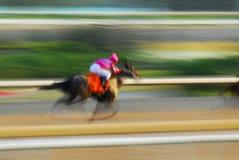 лошадиные скачки Стоковое Изображение RF