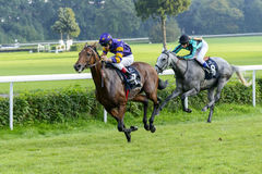 Лошади гонки на следе Partynice Стоковые Изображения