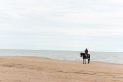 Лошади езды людей на пляже Стоковая Фотография
