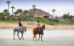 Лошади на пляже Стоковые Изображения RF
