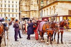 Лошади экипажа идя в улицы одного из самых красивых европейских городов - вена Австралии Стоковые Фото