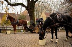 Лошади, экипаж на мощенной булыжником улице в средневековом городке стоковое фото rf
