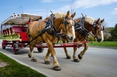 Лошад-нарисованный винтажный экипаж обеспечивает транспорт для гостей грандиозной гостиницы Стоковые Фотографии RF