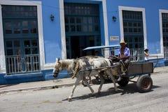 Лошад-нарисованный экипаж в Тринидаде, Кубе стоковое изображение