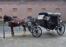 Лошад-нарисованный экипаж в Дублине Стоковые Изображения RF