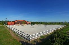 лошадь академии Стоковое Фото